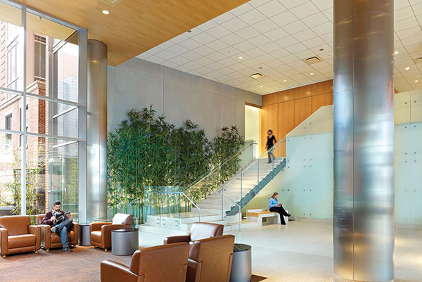 green interior design as seen in boston medical centers carl j and ruth shapiro ambulatory care centers lobby enables facilities to be responsible - Environmental Interior Design