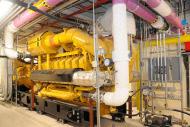 Baltimore Washington Medical Center Cogeneration Plant