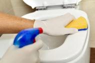0517_es_toilet_clean.jpg
