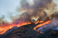 HFM0119_UPFT_1_wildfires.jpg