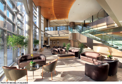 Sunny interior of a hospital concourse.  Large windows, high ceilings, and an escalator surround comfortable leather couches and chairs